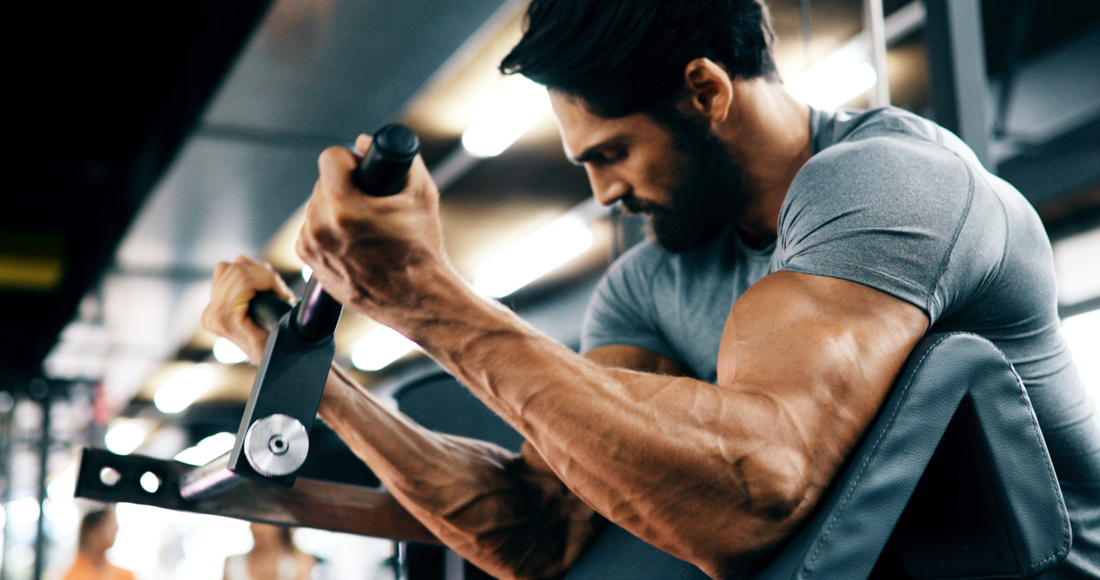 , 5 Tips for the Best Arm Workouts, Basics of Bodybuilding