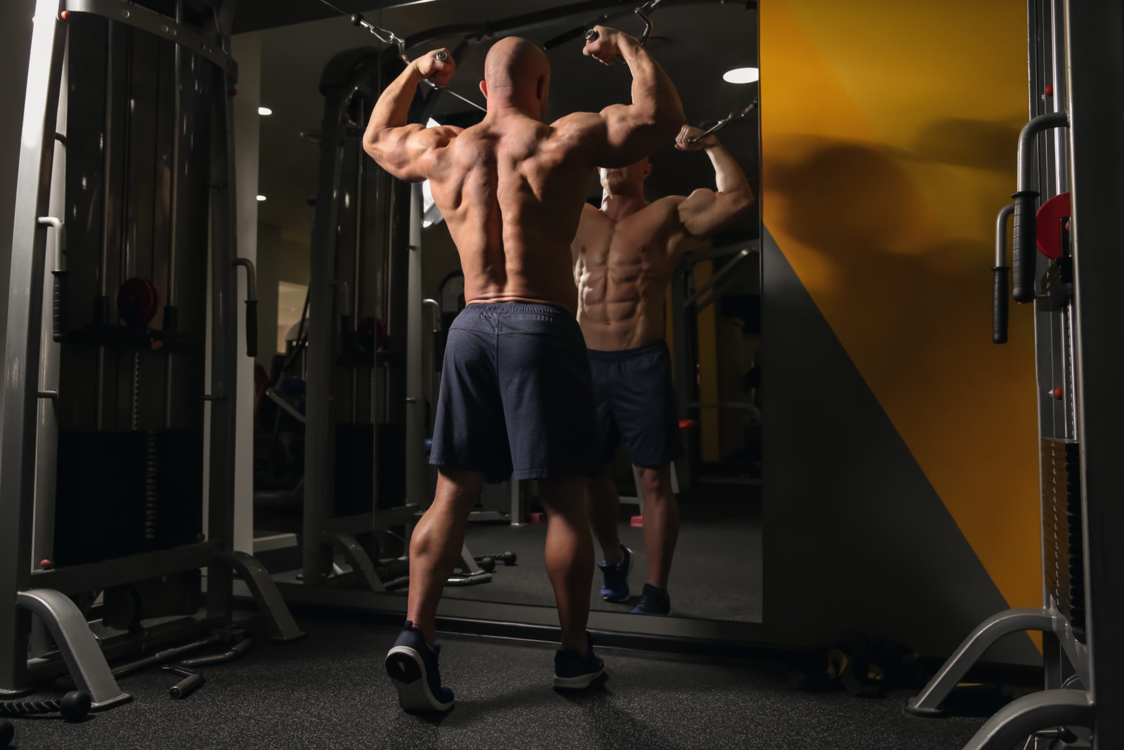 , Build a Bigger Back With These Back Workouts, Basics of Bodybuilding